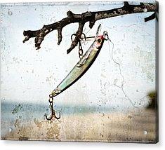 Fishing Lure Art - Caught - Sharon Cummings Acrylic Print by Sharon Cummings