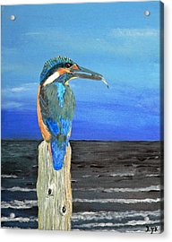 Fishing Post Kingfisher Of Eftalou. Acrylic Print by Eric Kempson