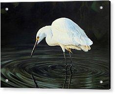 Fishing The Shadows Acrylic Print