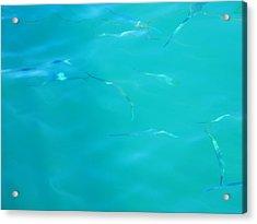 Fishy Sea Acrylic Print by Debbie Oppermann