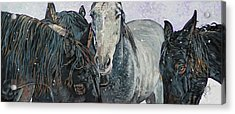 Five Horses In The Snow Acrylic Print