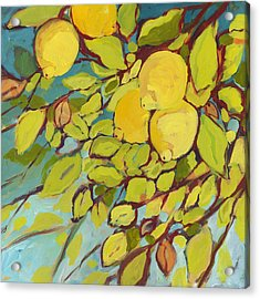 Five Lemons Acrylic Print by Jennifer Lommers