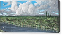Five Pines Acrylic Print by Candace Shockley