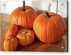 Five Pumpkins Acrylic Print