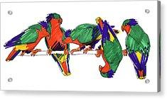 Five Rimatara Lorikeets Acrylic Print