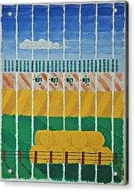 Five Tractors Acrylic Print