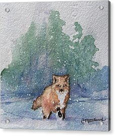 Fox In Snow Acrylic Print