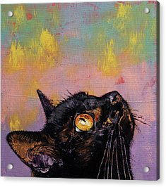 Fixed Gaze Acrylic Print by Michael Creese