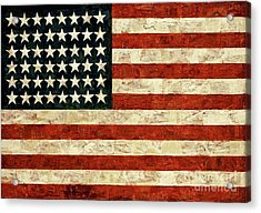 Flag, Jasper Johns, 1954 Acrylic Print