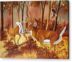 Flagging Deer Acrylic Print by Debbie LaFrance