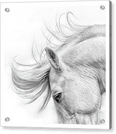 Flair Acrylic Print