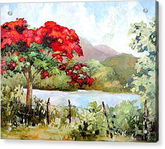 Flamboyan By The Lake Acrylic Print by Monica Linville
