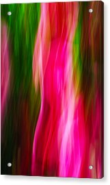 Flames Of Passion Acrylic Print