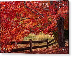 Flames On The Fence Acrylic Print by Darren  White