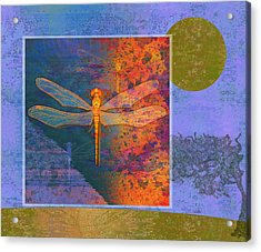 Flaming Dragonfly Acrylic Print by Mary Ogle
