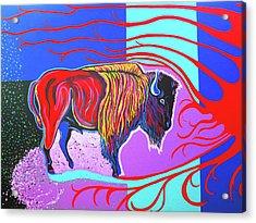 Flaming Heart Buffalo Acrylic Print by Debbie Chamberlin