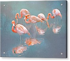 Flamingo Blues Acrylic Print