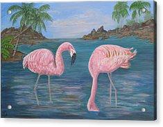 Flamingo Cove Acrylic Print by Mikki Alhart