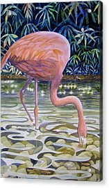 Flamingo Fishing Acrylic Print by Martha Ayotte