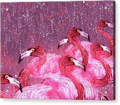 Flamingo Frenzy Acrylic Print