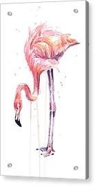 Flamingo Illustration Watercolor - Facing Left Acrylic Print
