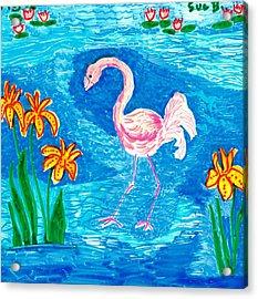 Flamingo Acrylic Print by Sushila Burgess