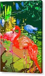 Flamingo Time Acrylic Print by Josy Cue