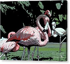 Acrylic Print featuring the photograph Flamingos I by Jim and Emily Bush