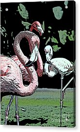 Acrylic Print featuring the photograph Flamingos II by Jim and Emily Bush
