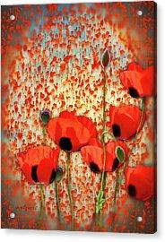 Flanders Fields Acrylic Print