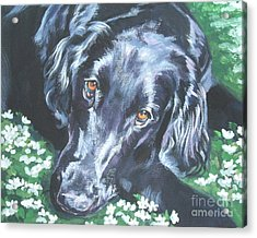 Acrylic Print featuring the painting Flat Coated Retriever by Lee Ann Shepard