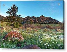Flatirons Sunrise Acrylic Print