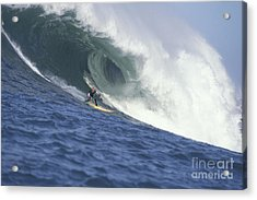 Flea On A Mavericks Giant Acrylic Print by Stan and Anne Foster