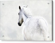 Fleeing Grey Horse Acrylic Print