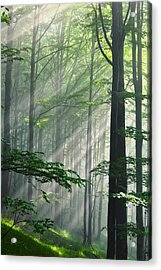 Fleeting Beams Acrylic Print by Evgeni Dinev