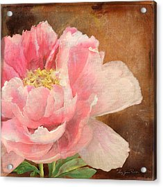 Fleeting Glory - Peony 2 Acrylic Print by Audrey Jeanne Roberts