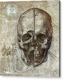 Flesh And Bone - Da Vinci Acrylic Print by Daniel Hagerman
