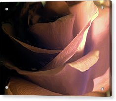 Acrylic Print featuring the digital art Fleur D'amour by Holly Ethan