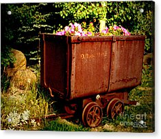 Fleurs In Rustic Ore Car Acrylic Print by Christine S Zipps