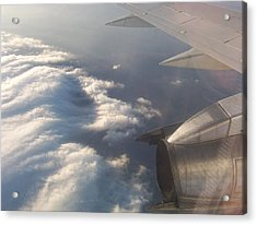 Flight Acrylic Print by Adam Schwartz
