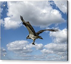 Flight Among The Clouds Acrylic Print