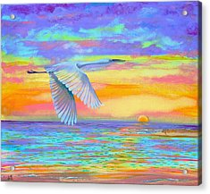 Flight Of Color Acrylic Print