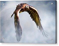Flight Of Fancy Acrylic Print by Julie L Hoddinott