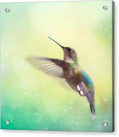 Flight Of Fancy - Square Version Acrylic Print by Amy Tyler