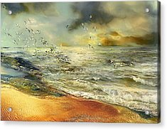 Flight Of The Seagulls Acrylic Print by Anne Weirich