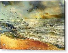 Flight Of The Seagulls Acrylic Print by Anne Weirich