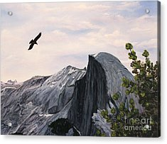 Acrylic Print featuring the painting Flight Over Yosemite by Judy Filarecki