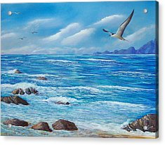 Flight Seascape Acrylic Print