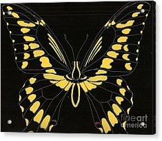 Flight Series 11 Yellow Tail Acrylic Print by Iamthebetty Tbone