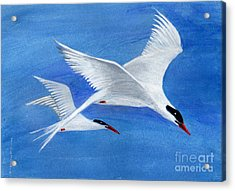 Flight - Painting Acrylic Print by Veronica Rickard